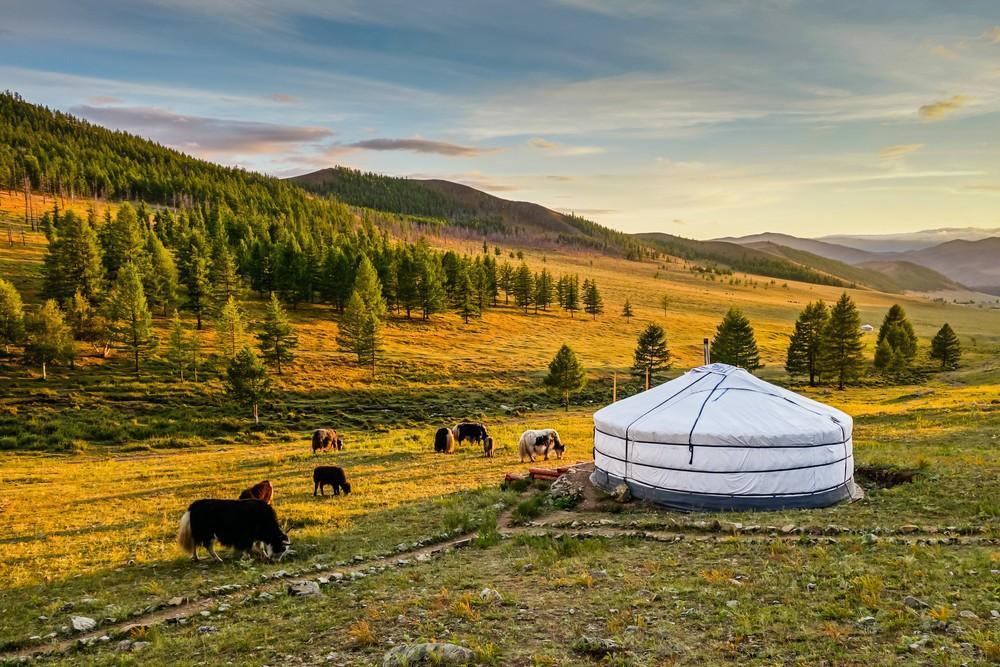 Mongolei Sonnenuntergang